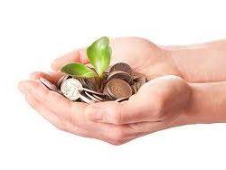 Get your moneys worth - Vivian Baruch online & Springwood