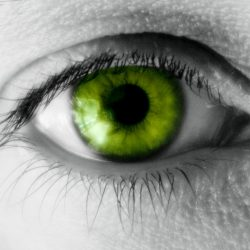 The Green-eyed Monster – Jealousy