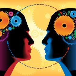 Neurobiology of Relationships - Vivian Baruch online & Springwood
