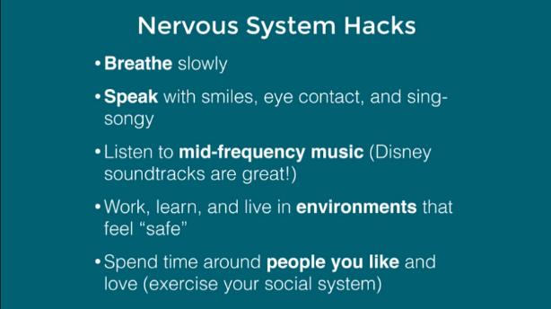 Seth Porges - Nervous system hacks